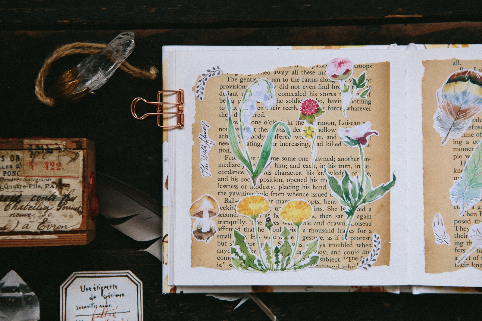 Plants  自剪貼紙